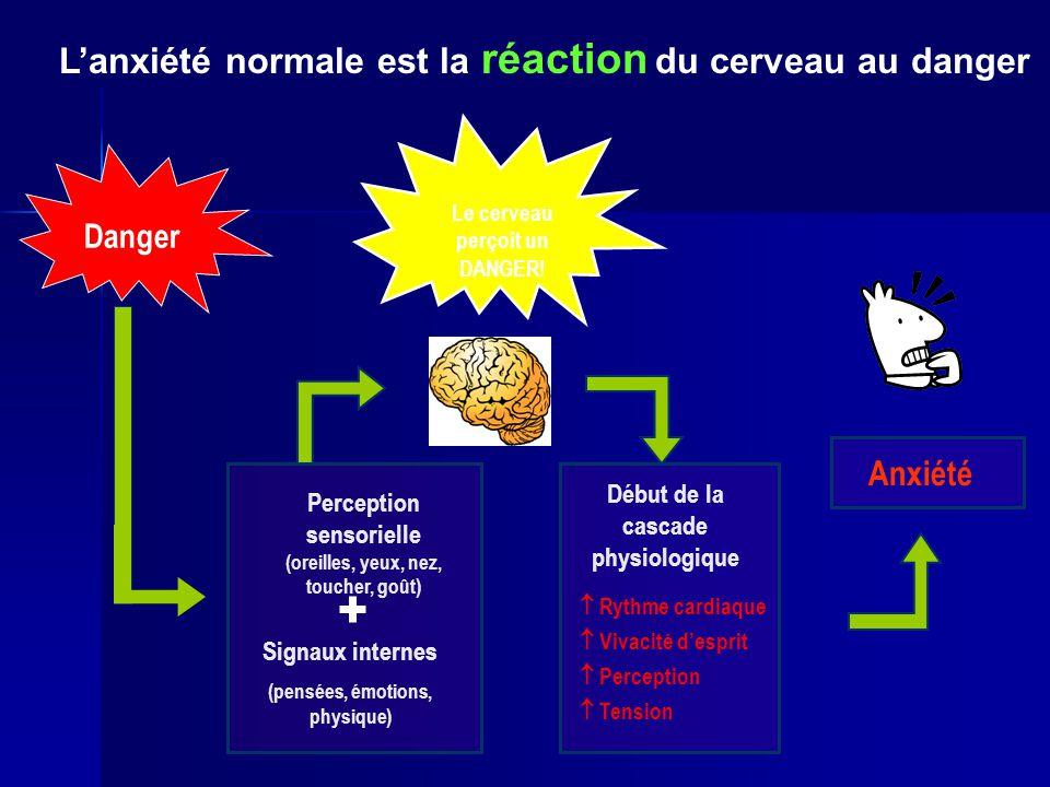 L'anxiété normale est la réaction du cerveau au danger
