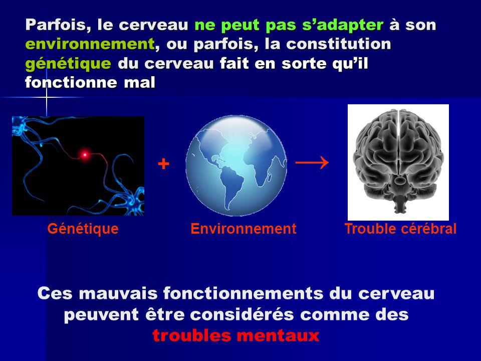 Parfois, le cerveau ne peut pas s'adapter à son environnement, ou parfois, la constitution génétique du cerveau fait en sorte qu'il fonctionne mal