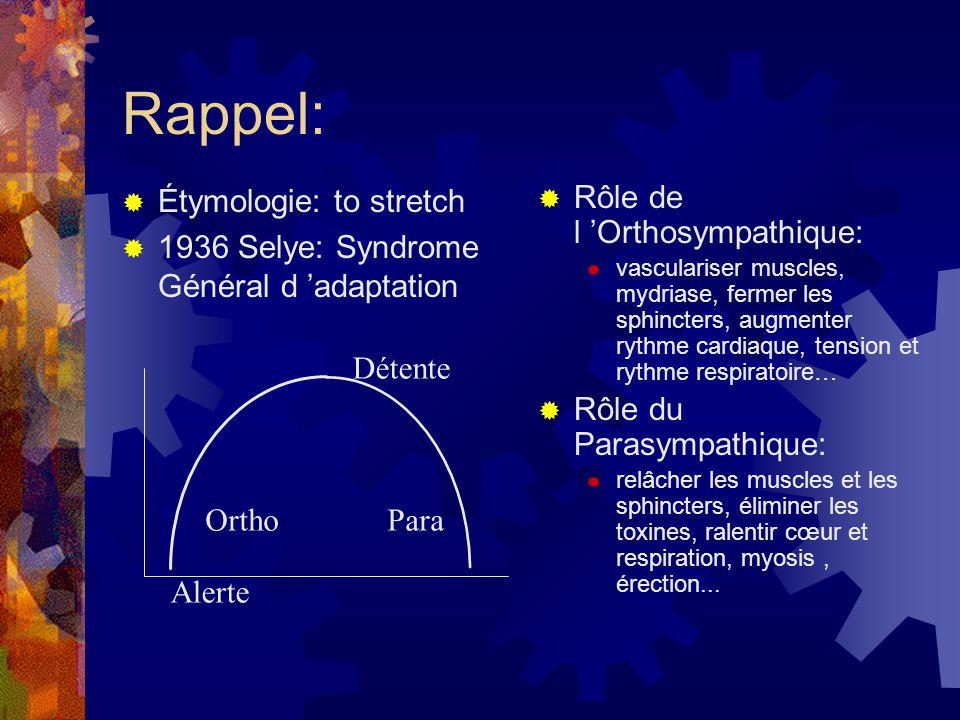 Rappel: Étymologie: to stretch