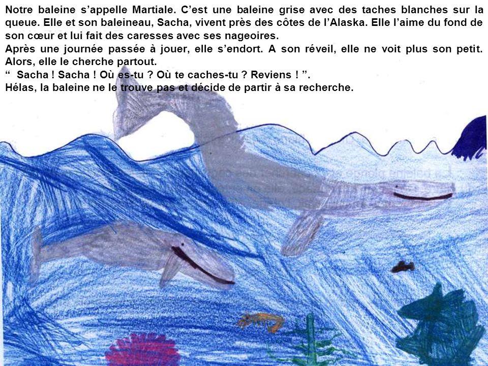 Notre baleine s'appelle Martiale