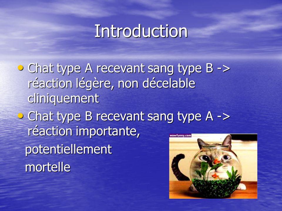 Introduction Chat type A recevant sang type B -> réaction légère, non décelable cliniquement.
