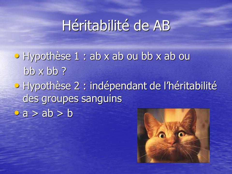 Héritabilité de AB Hypothèse 1 : ab x ab ou bb x ab ou bb x bb