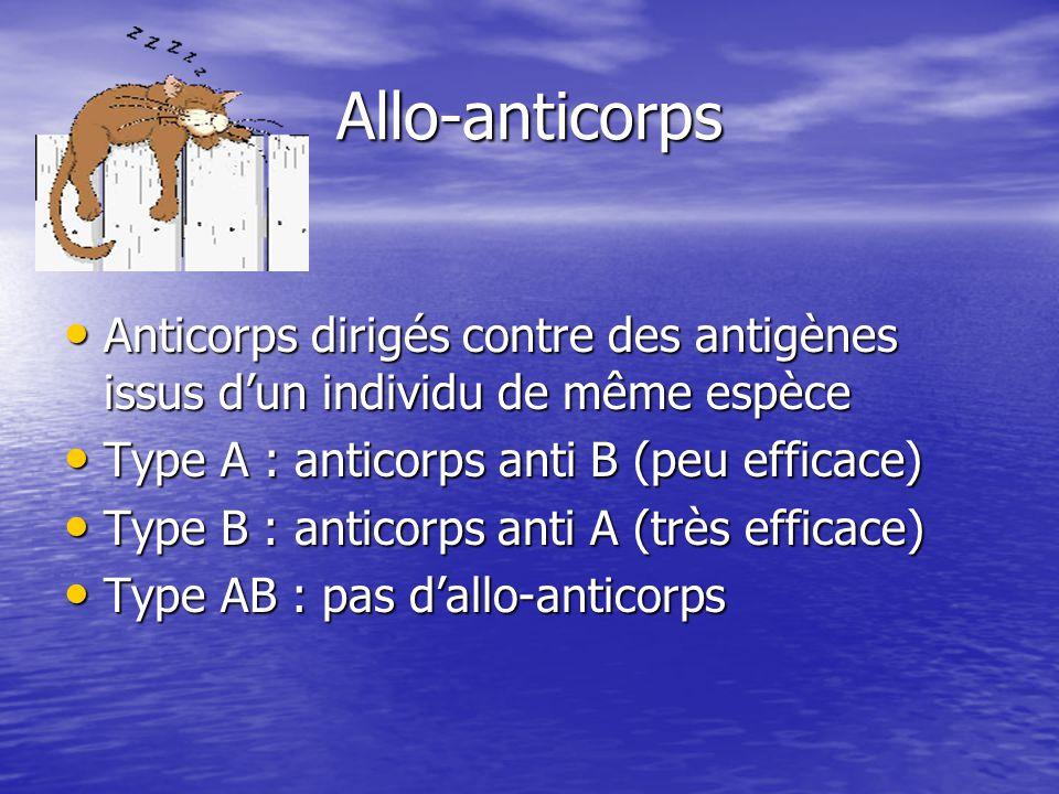 Allo-anticorps Anticorps dirigés contre des antigènes issus d'un individu de même espèce. Type A : anticorps anti B (peu efficace)