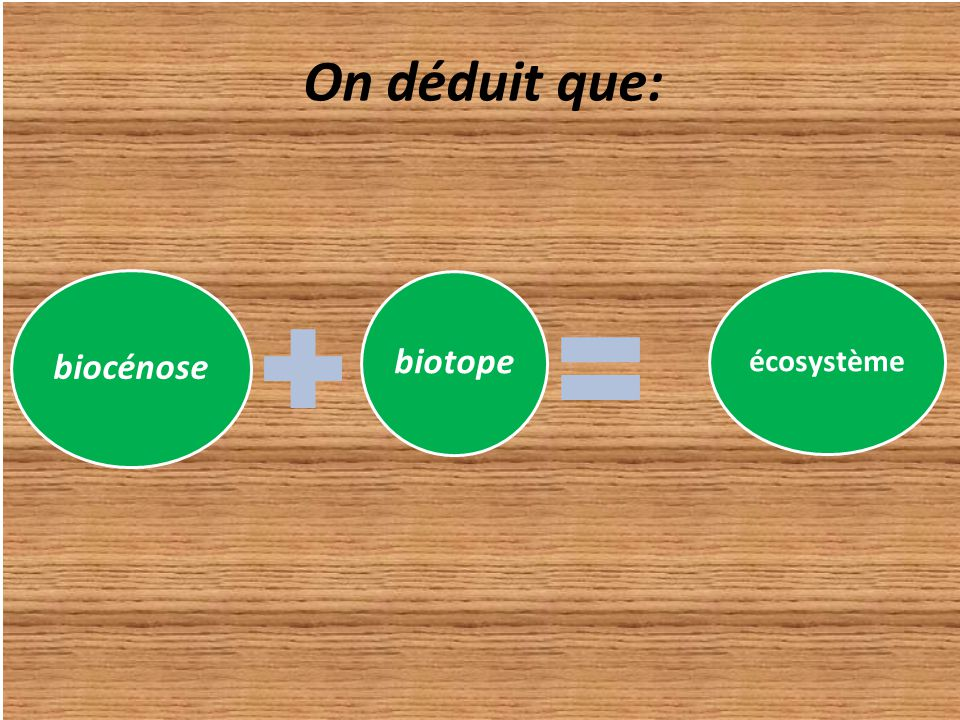 On déduit que: biocénose biotope écosystème