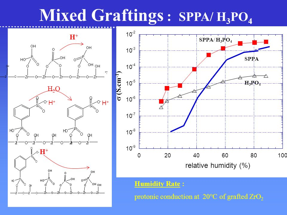 Mixed Graftings : SPPA/ H3PO4