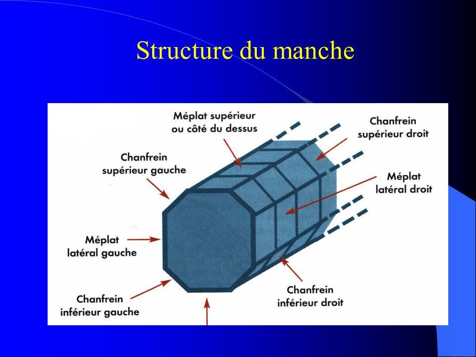 Structure du manche