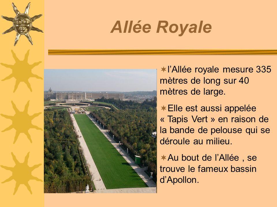 Allée Royalel'Allée royale mesure 335 mètres de long sur 40 mètres de large.