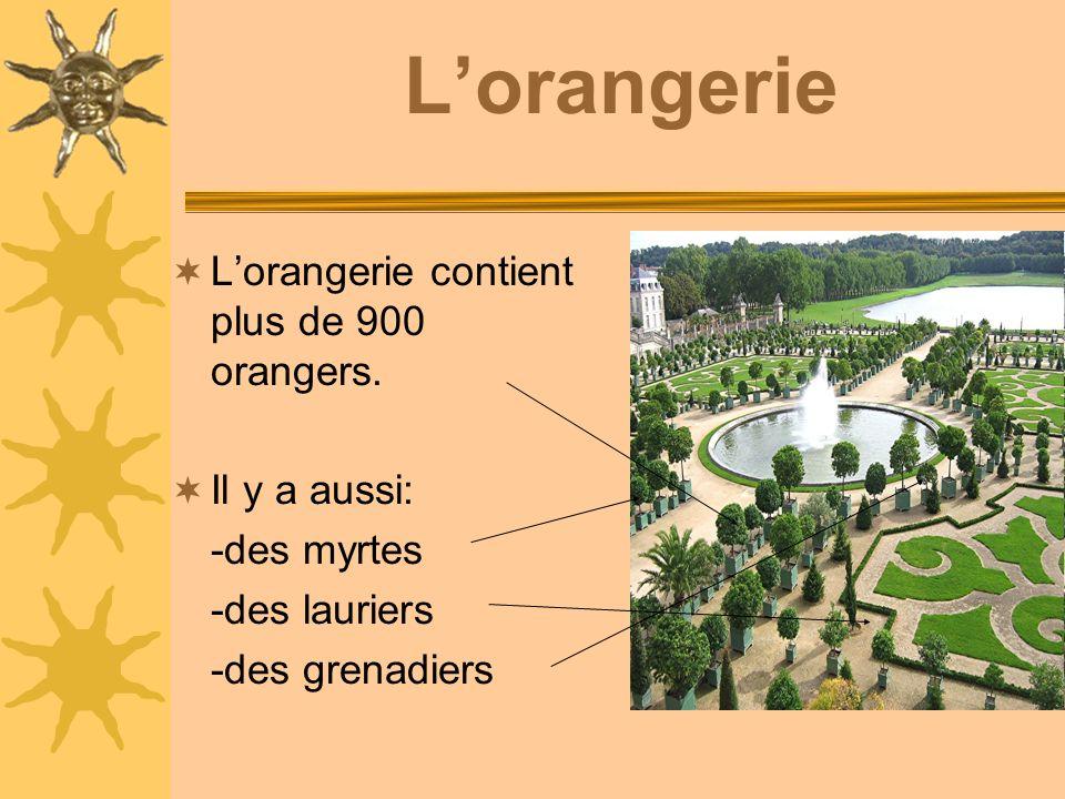 L'orangerie L'orangerie contient plus de 900 orangers. Il y a aussi: