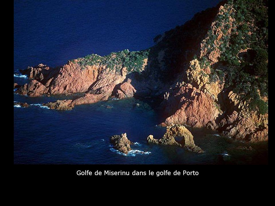 Golfe de Miserinu dans le golfe de Porto