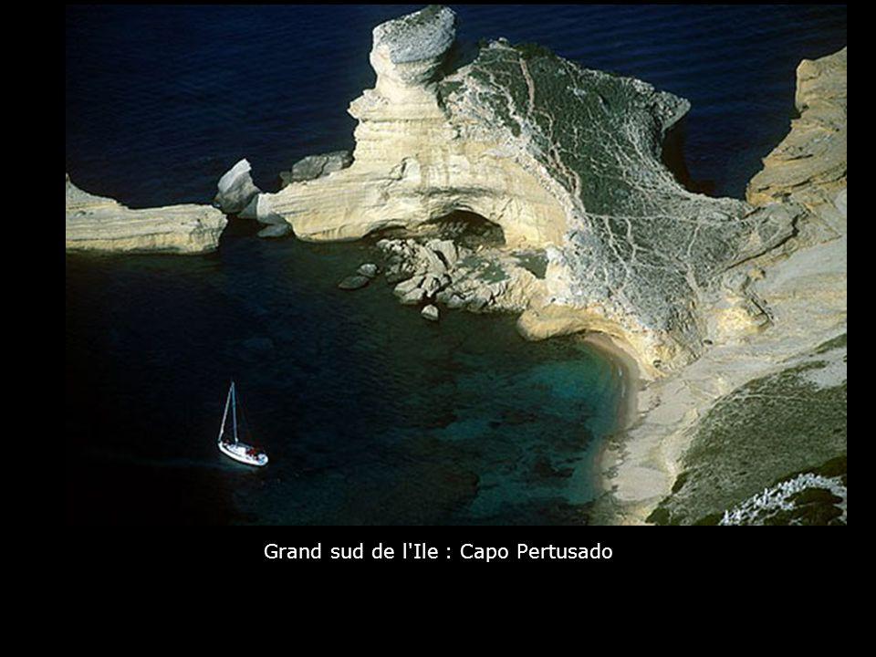 Grand sud de l Ile : Capo Pertusado