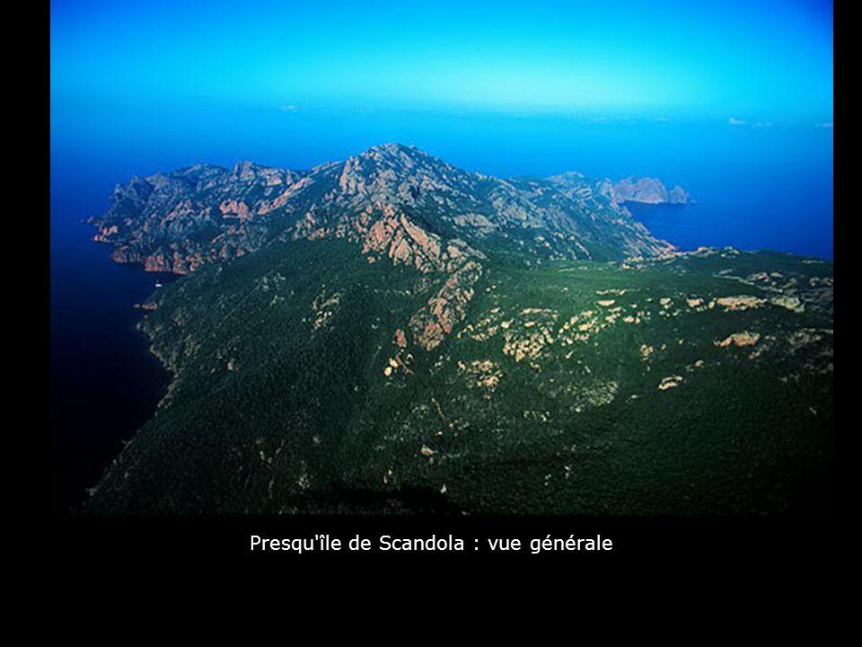 Presqu île de Scandola : vue générale