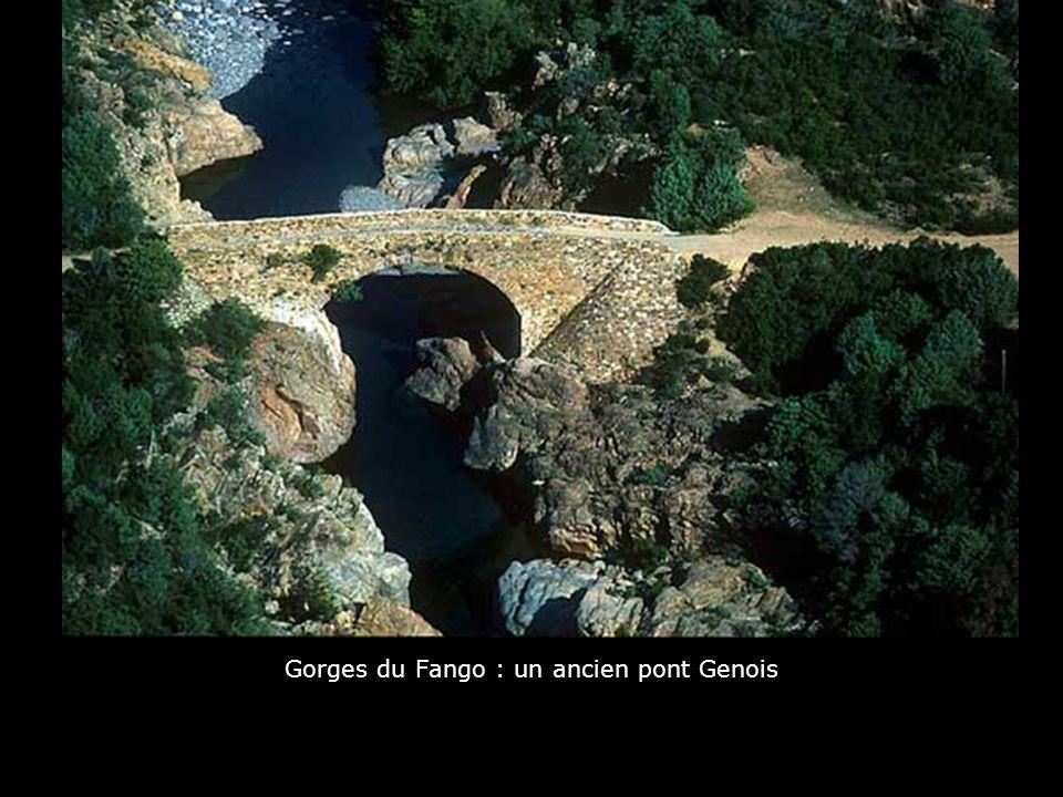 Gorges du Fango : un ancien pont Genois