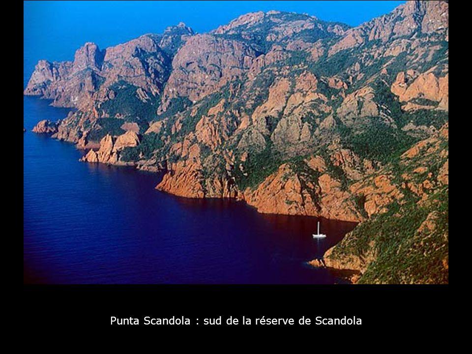 Punta Scandola : sud de la réserve de Scandola