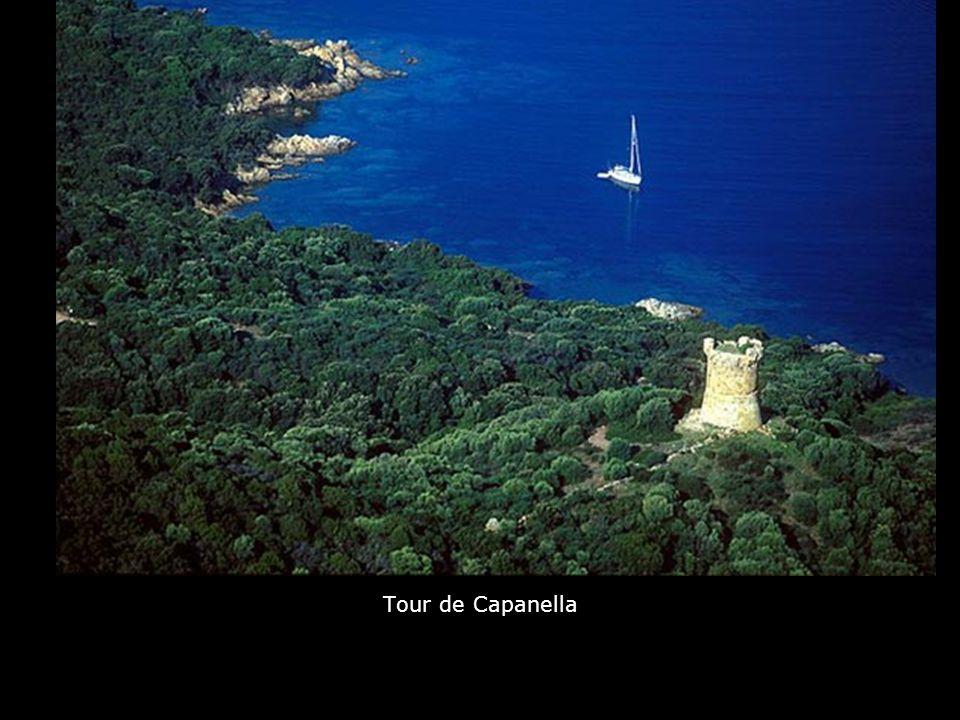Tour de Capanella