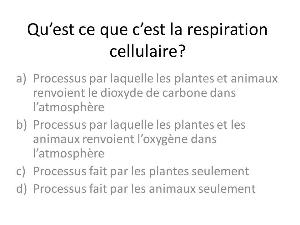Qu'est ce que c'est la respiration cellulaire