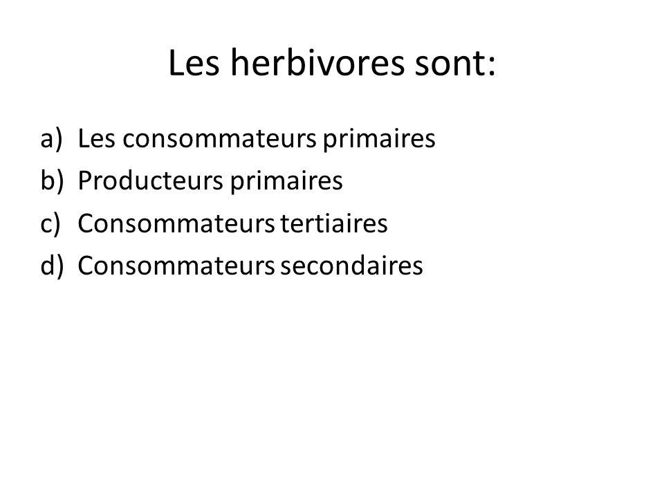 Les herbivores sont: Les consommateurs primaires Producteurs primaires