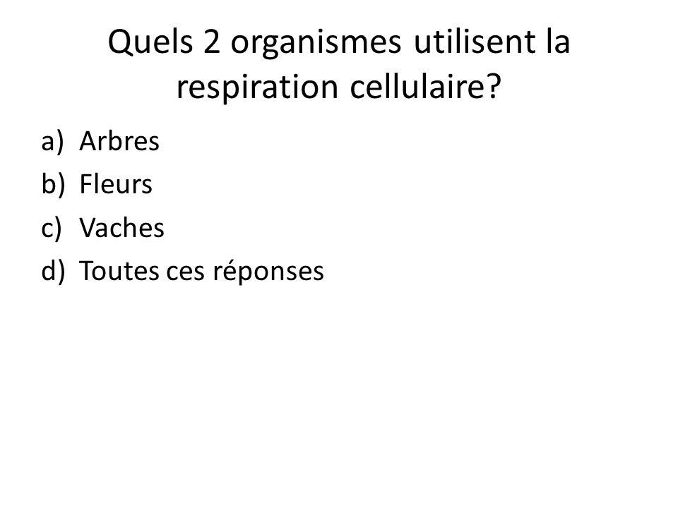 Quels 2 organismes utilisent la respiration cellulaire