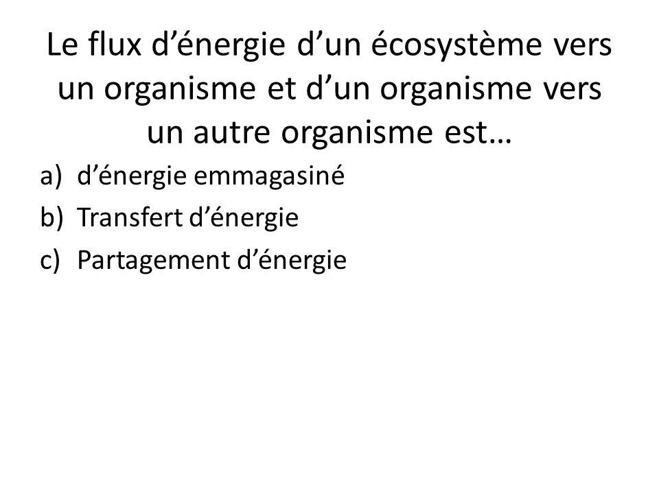 Le flux d'énergie d'un écosystème vers un organisme et d'un organisme vers un autre organisme est…
