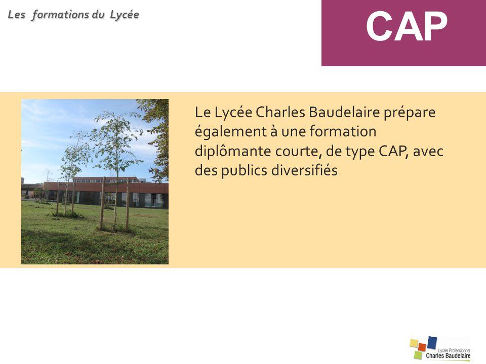 CAP Les formations du Lycée.
