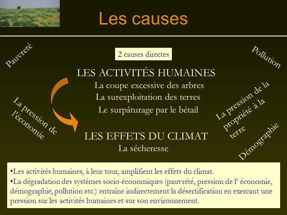 Les causes LES ACTIVITÉS HUMAINES LES EFFETS DU CLIMAT Pauvreté
