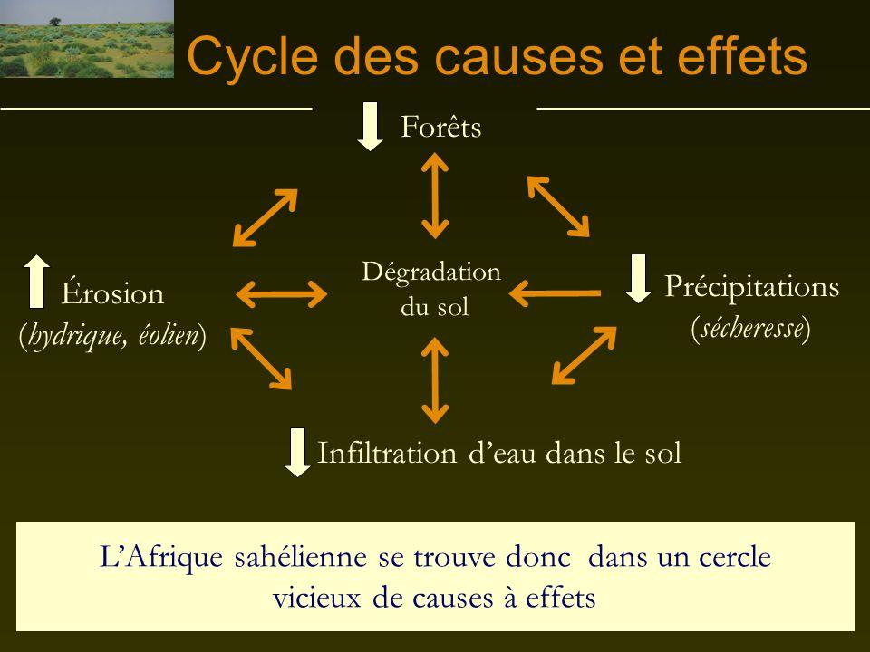 Cycle des causes et effets