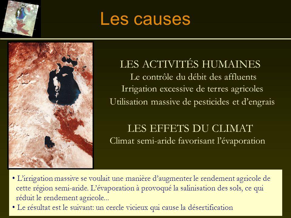 Les causes LES ACTIVITÉS HUMAINES LES EFFETS DU CLIMAT