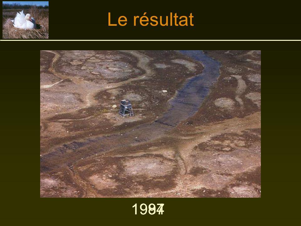 Le résultat 1997 1984