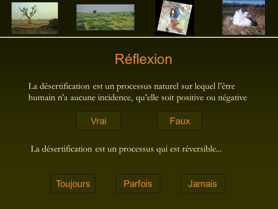 Réflexion La désertification est un processus naturel sur lequel l'être humain n'a aucune incidence, qu'elle soit positive ou négative.