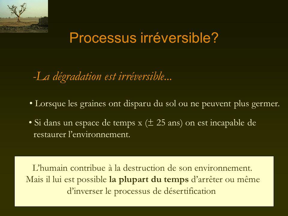 Processus irréversible