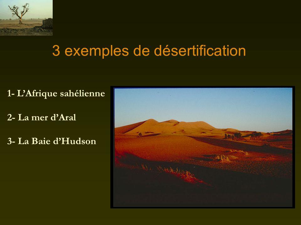 3 exemples de désertification