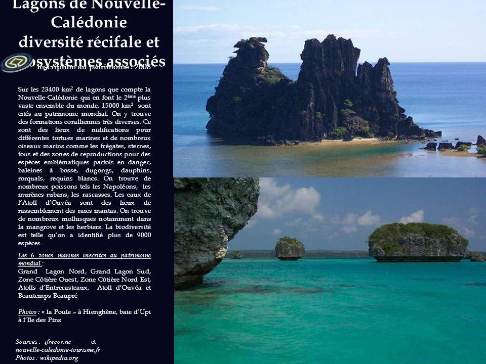 Lagons de Nouvelle-Calédonie diversité récifale et écosystèmes associés