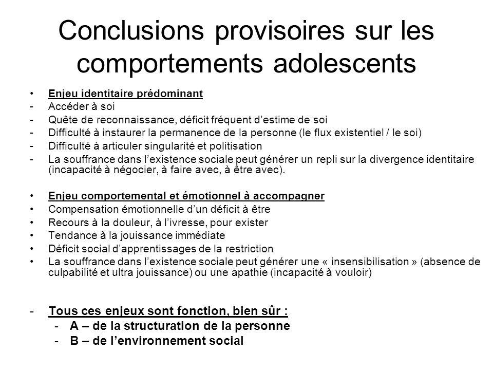 Conclusions provisoires sur les comportements adolescents
