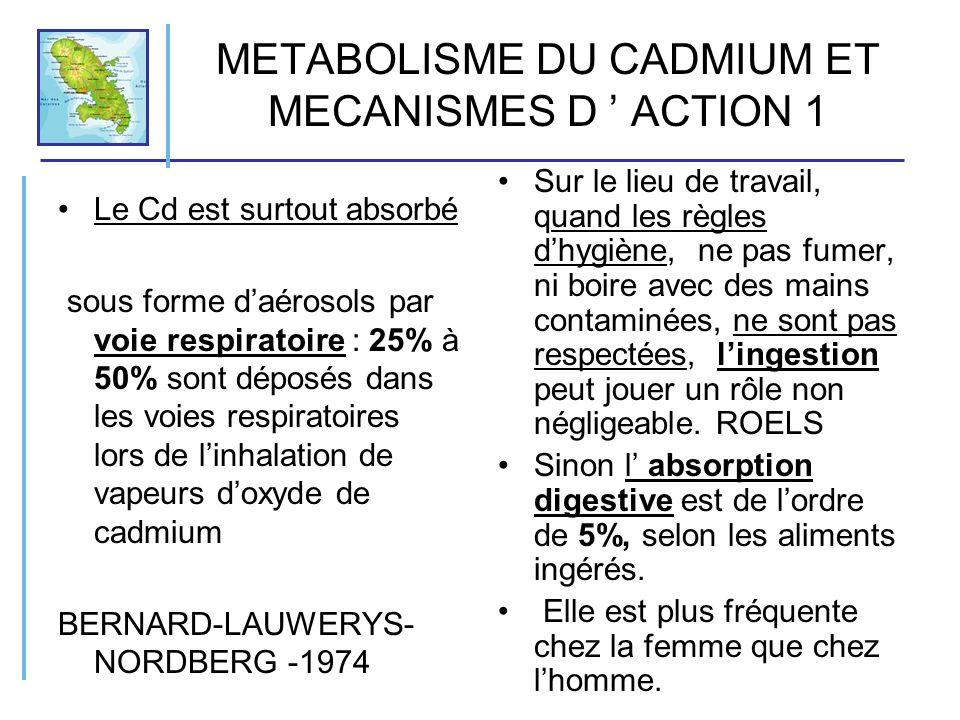 METABOLISME DU CADMIUM ET MECANISMES D ' ACTION 1