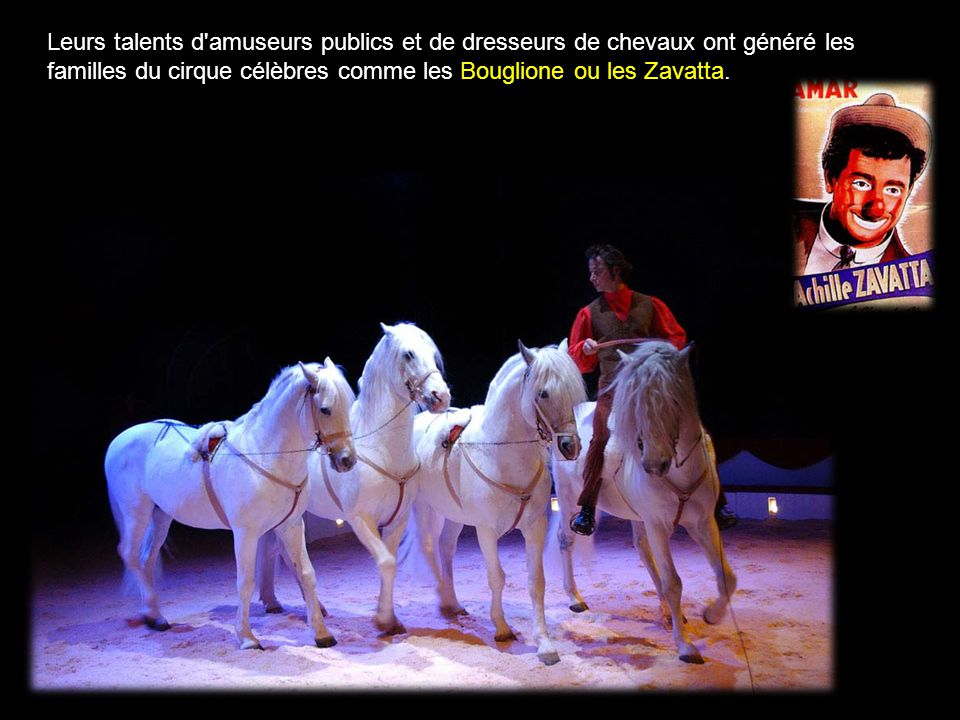 Leurs talents d amuseurs publics et de dresseurs de chevaux ont généré les familles du cirque célèbres comme les Bouglione ou les Zavatta.