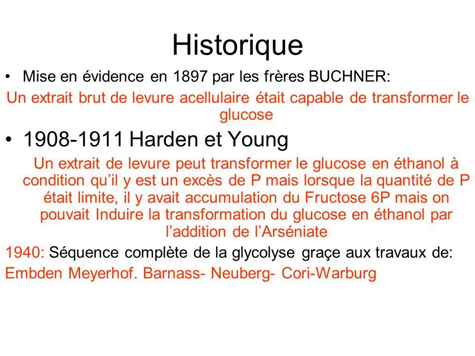 Historique 1908-1911 Harden et Young