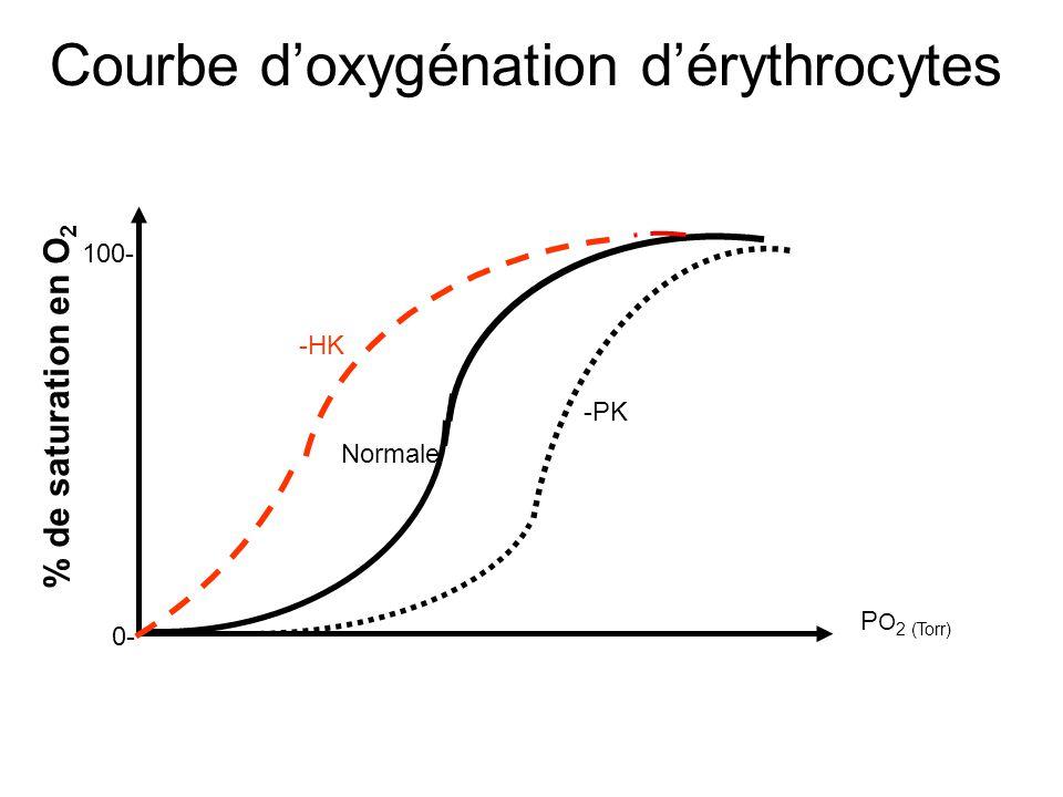 Courbe d'oxygénation d'érythrocytes