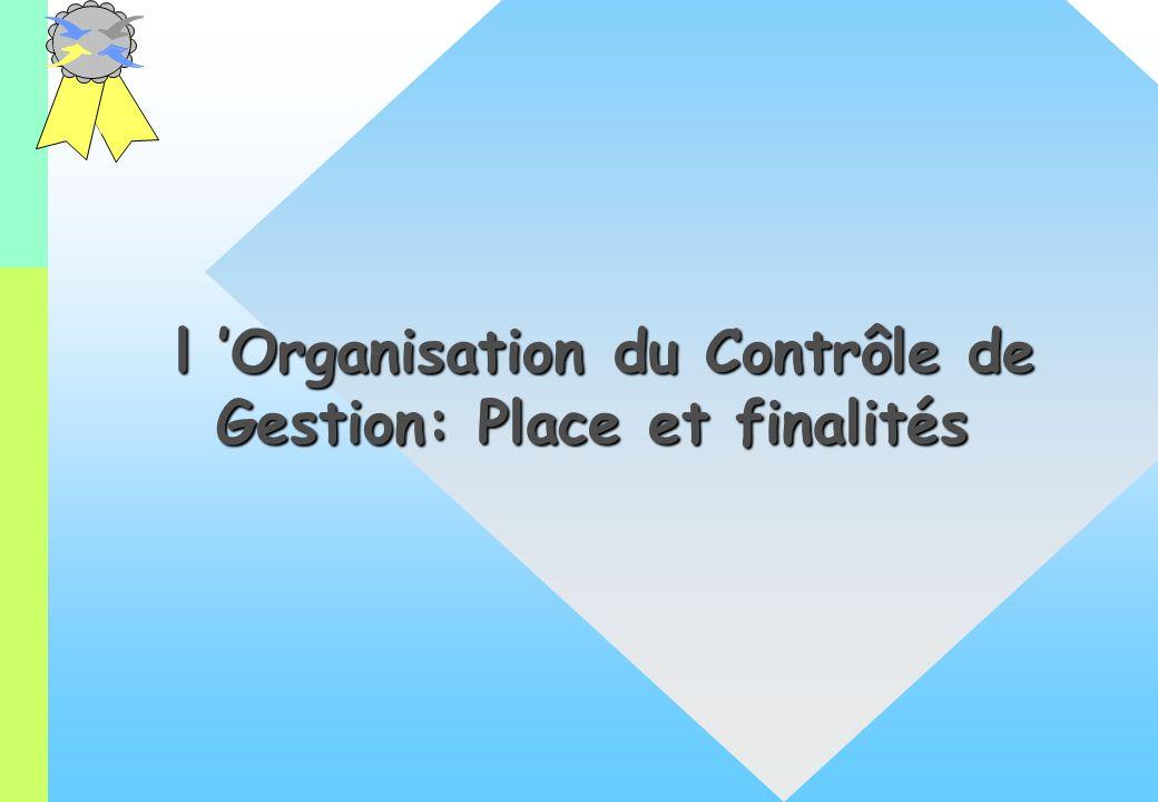 l 'Organisation du Contrôle de Gestion: Place et finalités