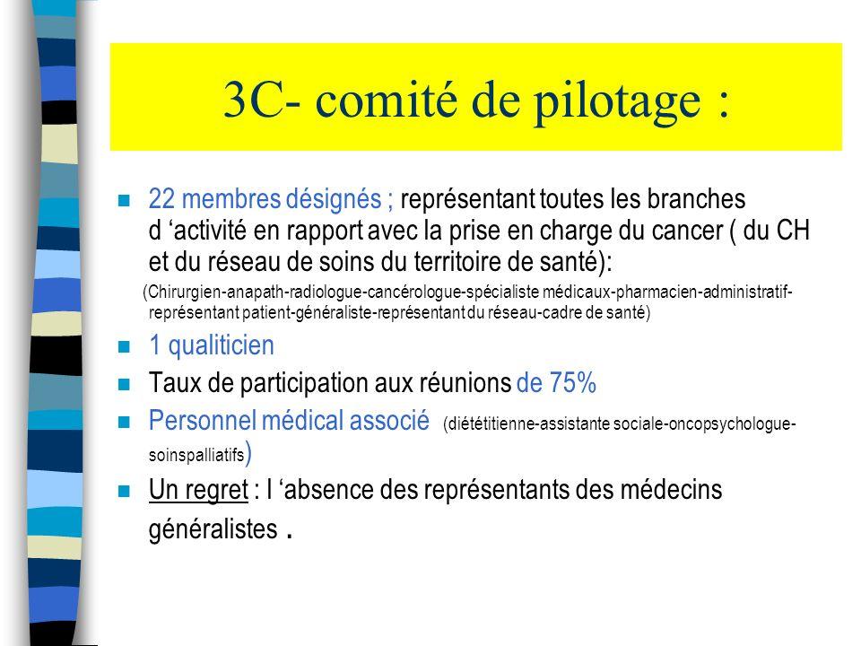 3C- comité de pilotage :