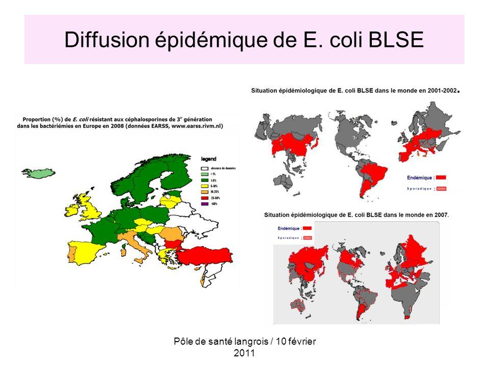 Diffusion épidémique de E. coli BLSE
