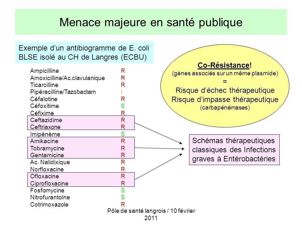 Menace majeure en santé publique