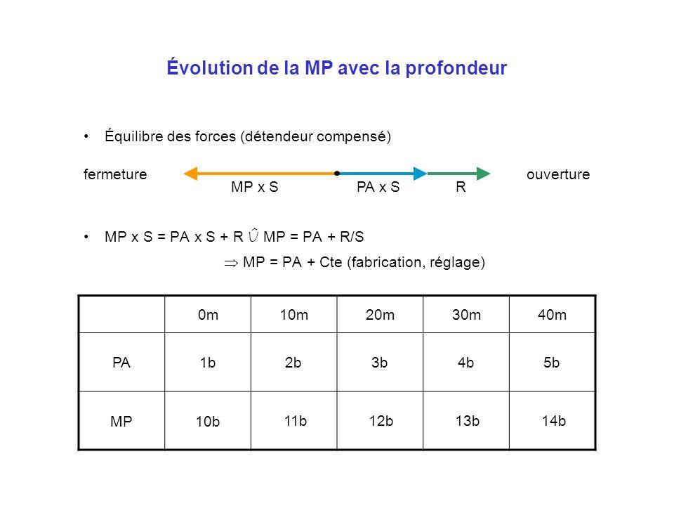 Évolution de la MP avec la profondeur