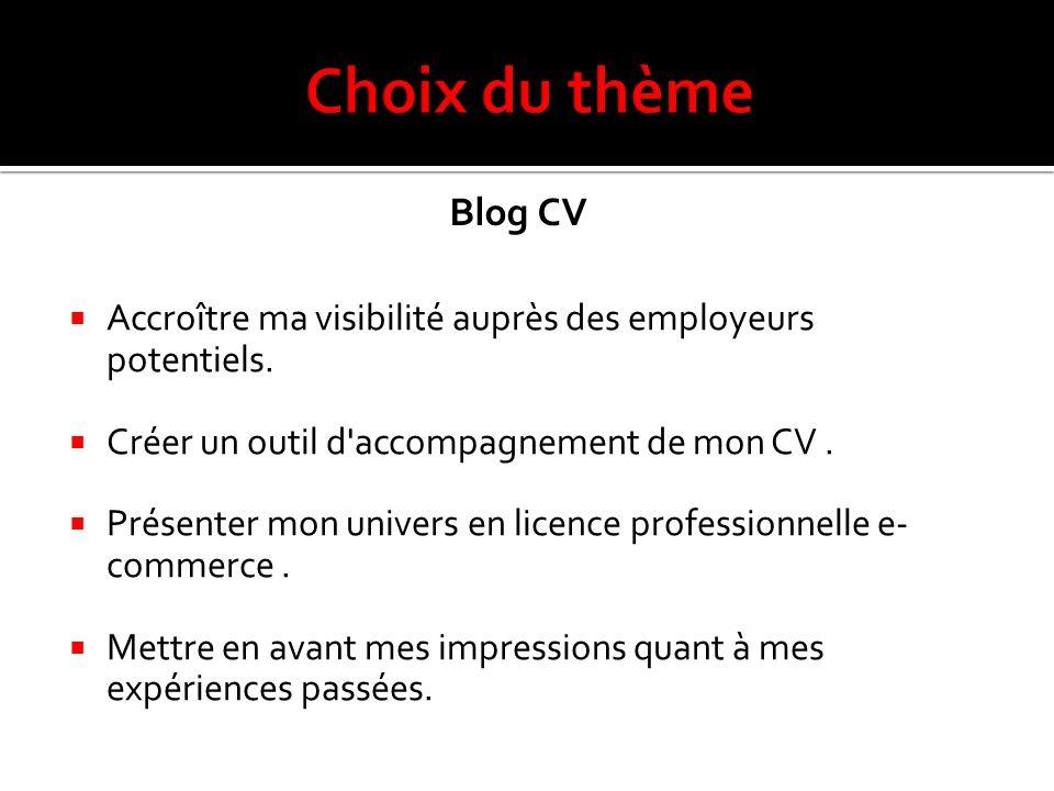 Choix du thème Blog CV. Accroître ma visibilité auprès des employeurs potentiels. Créer un outil d accompagnement de mon CV .