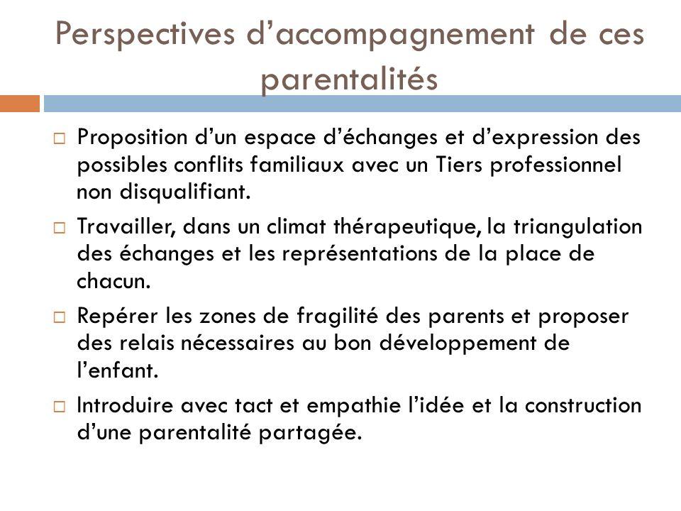 Perspectives d'accompagnement de ces parentalités