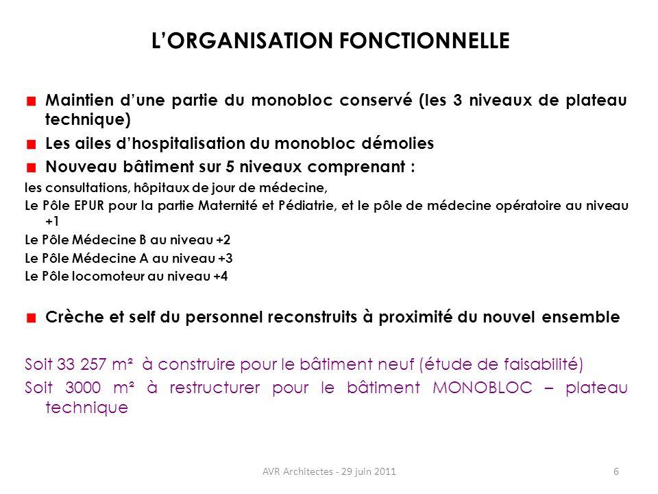 L'ORGANISATION FONCTIONNELLE