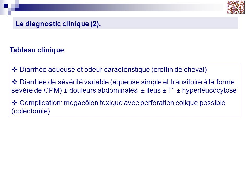 Le diagnostic clinique (2).