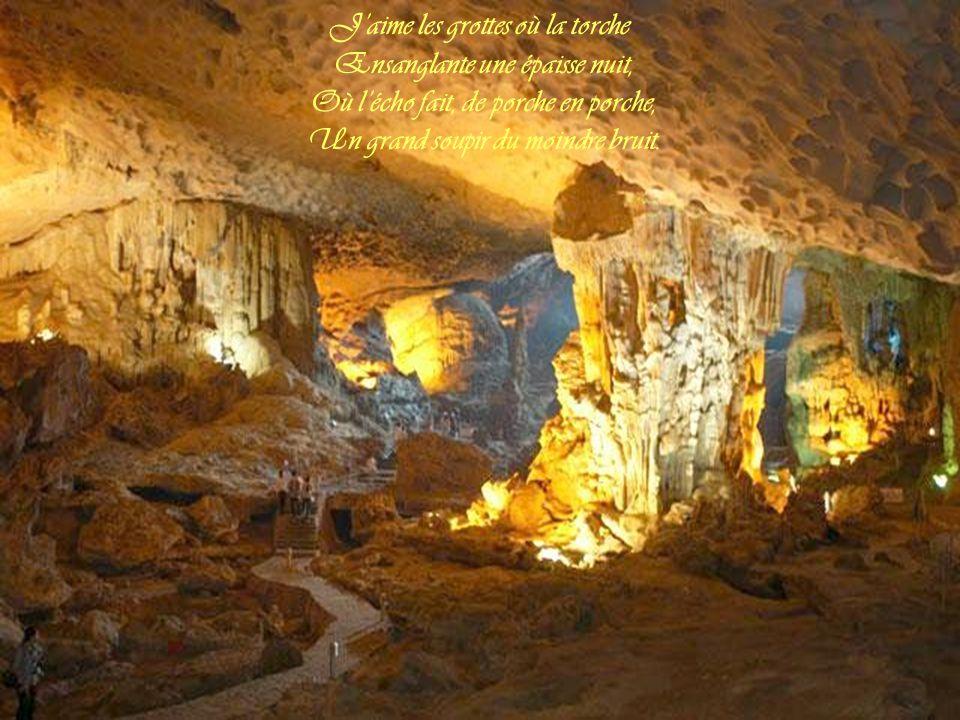 J'aime les grottes où la torche Ensanglante une épaisse nuit,