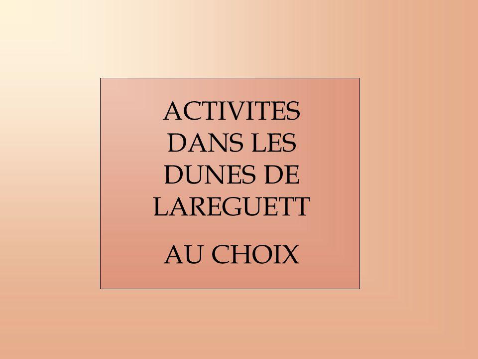 ACTIVITES DANS LES DUNES DE LAREGUETT