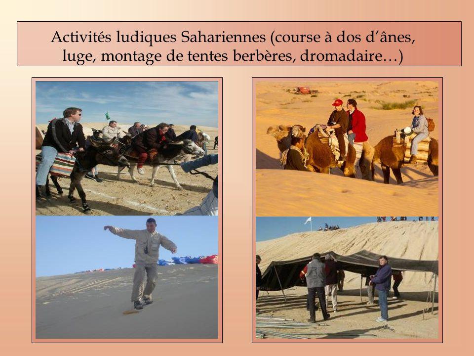 Activités ludiques Sahariennes (course à dos d'ânes, luge, montage de tentes berbères, dromadaire…)