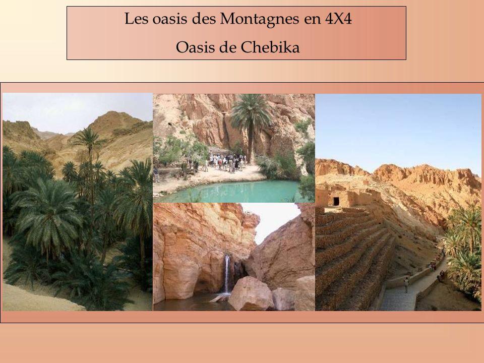 Les oasis des Montagnes en 4X4