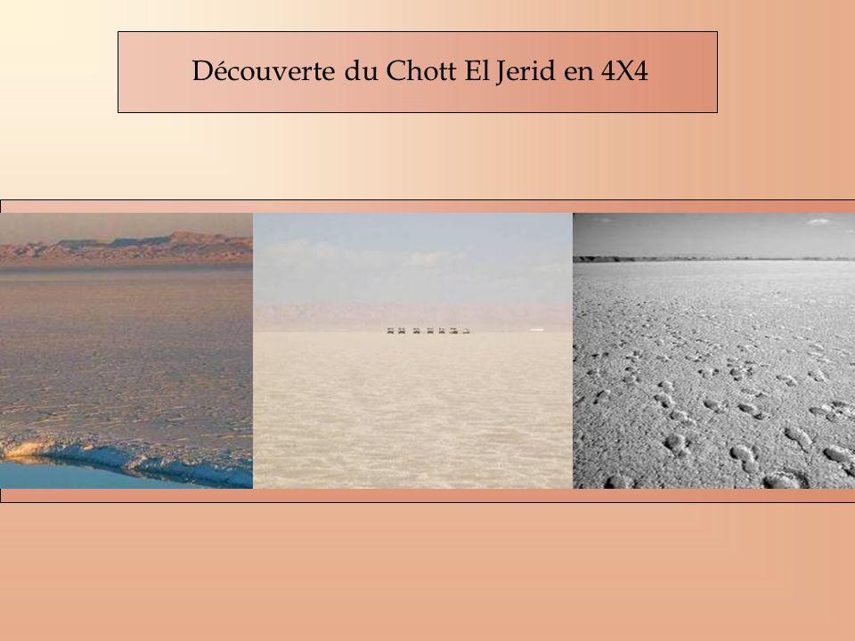 Découverte du Chott El Jerid en 4X4